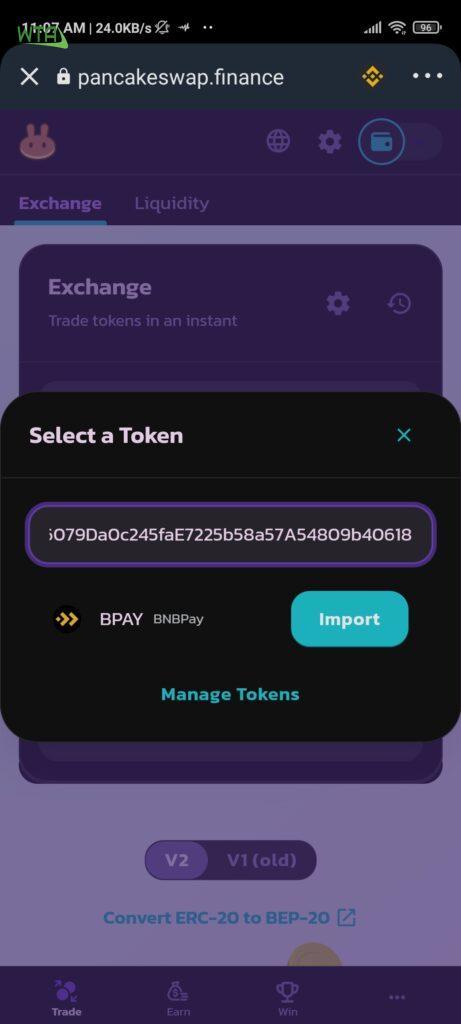 bnbpay token contract address